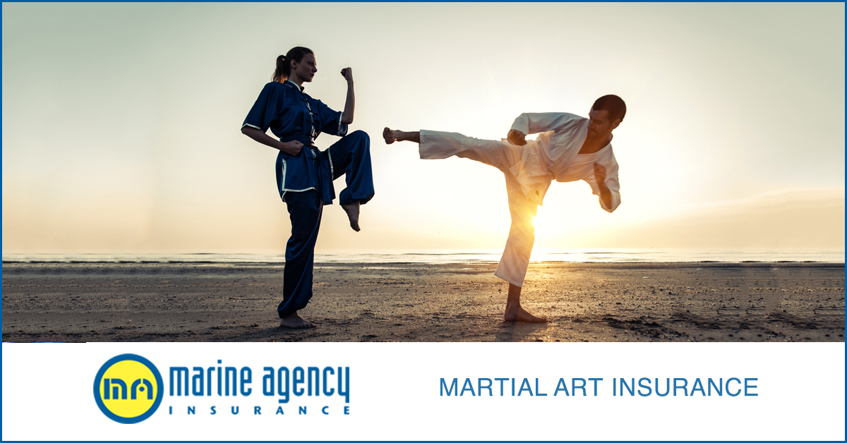 martialartinsurance (1)