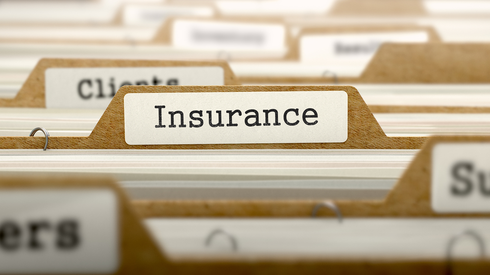 picture of insurance file
