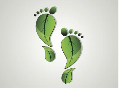 offset carbon footprint business